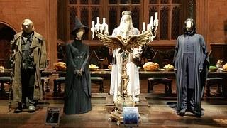 Adiós Snape, Descansa en Paz